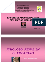 enf urinaria1