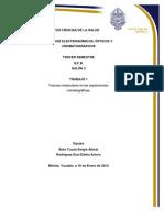 Trabajo 1- Fuerzas moleculares en cromatografía
