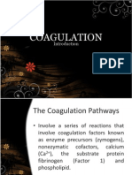 Mechanisms of Coagulation