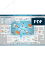 Mapa Virtualizacao Cartaz Folder