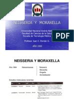 NEISSERIA  Y  MORAXELLA