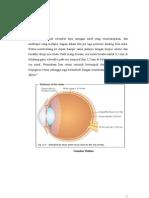 Oklusi Arteri Vena Retina