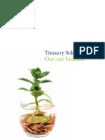 Deloitte Treasury Business