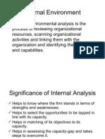 Internal Analysis (1)