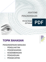anatomi-indera280211