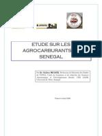Etude Sur Les Agrocarburants Au Senegal(Draft_1)
