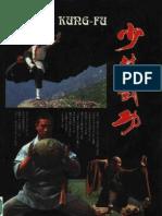 Shaolin_Kungfu