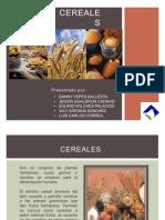 cereales exposicion