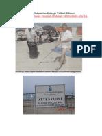 Ordinanze Delibere Determine Spiagge Tributi Bilanci Gara Gestione Spiagge Pulizia Spiagge Temporary Ato PA1 AG GROUP [2]