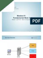 01 Lab Primer Mule 3 Configuration (MS)