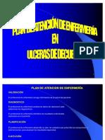 Pae - Ulceras Por Decubito