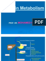 Protein Metabolism and acids SamyA1