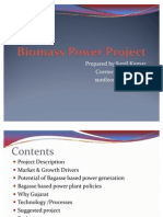 Biomass Power Project -2