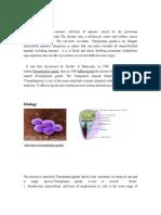Final Toxoplasmosis
