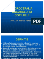 Hidrocefalia sugarului