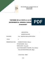 Informe de INIA