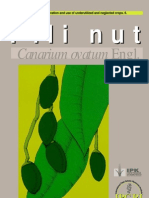 Promoting the Conservation and Use of Under Utilized and Neglected Crops. 06 - Pili Nut