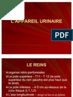 appareil_urinaire