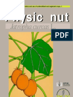 Promoting the Conservation and Use of Under Utilized and Neglected Crops. 01 - Physic Nut