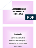 Microsoft Power Point - Aula 2 Anatomia General Ida Des