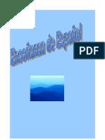 ENSEÑANZA DE ESPAÑOL