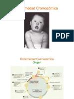 2. General Ida Des Enfermedad Cromosomica Parte 1