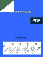 Molecular Biology I