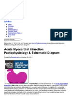 Nurseslabs.com-Acute Myocardial Infarction Pa Tho Physiology Amp Schematic Diagram