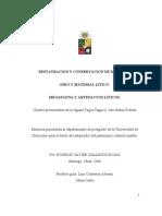 Gallegos, R.J. Restauración y conservación material óseo y lítico. 2006