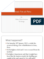 Fire Rehab at Peru