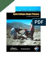 Jaldín, R. & Gutiérrez, L. 2005 Ayllu Callapa Abajo Primero
