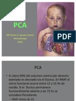 PCA neonatologia