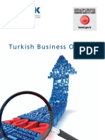 Turkish Business Outlook 202012