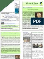 """Publicação Diocesana - """"Vinde e Vede"""" - N.º 11"""