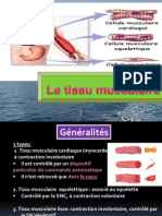 Tissu Musculaire Dr BENTAYEB