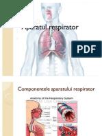 AP Respirator.pptm Auto Saved]