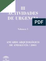 Anuario Arquelogico de Andalucia 2001