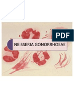 EXPO Nº10 (neisseria gonorrhoeae)