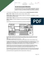 Uso de Coprocesador Matematico 2009