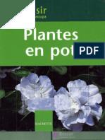 Plantes en Pot 49p