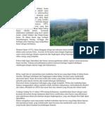 Pengertian Hutan Atau Definisi Hutan Yang Diberikan Dengler Adalah Suatu Kumpulan Atau Asosiasi Pohon