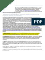 Liderazgo_Caracteristicas