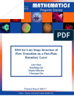 Lin Chen et al- DNS for Late Stage Structure of Flow Transition on a Flat- Plate Boundary Layer