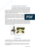 Petroleo y Petroquimica Word