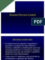 Neurofisiologia - Fisiopato DQ