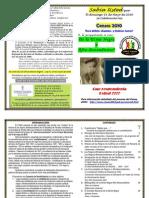 Consejo - Propuesta de HANDOUT Para Los Censos 2010 - JGF Modificada 8 Pgs