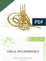 Visual Psycho Physics