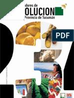 Indicadores de Evolución de la Provincia de Tucumán Nro 3 - Fundación del Tucumán