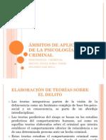 ÁMBITOS DE APLICACIÓN DE LA PSICOLOGÍA CRIMINAL