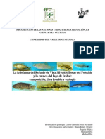La ictiofauna del Refugio de Vida Silvestre Bocas del Polochic y la cuenca del lago de Izabal